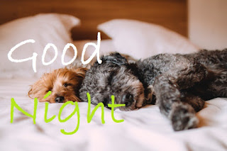 have a good night cute images