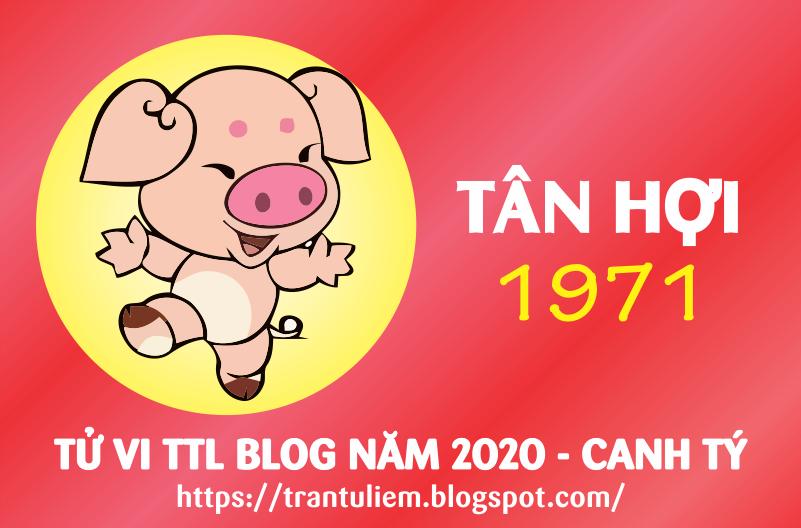 TỬ VI TUỔI TÂN HợI 1971 NĂM 2020