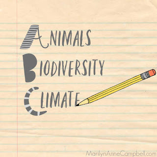 A graphic of lined paper with a pencil writing the words Animals, Biodiversity, Climate