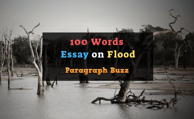 100 Words Essay on Flood