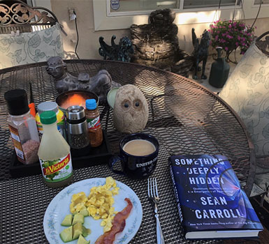 "A little light breakfast outside with a copy of ""Something Deeply Hidden: (Source: Palmia Observatory)"
