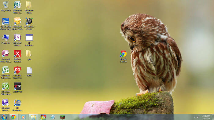 28 Creatively Hilarious Desktop Wallpapers We Wished We Had Thought Of First - Owl Desktop
