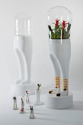macetas diseño cactus