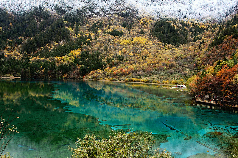 jiuzhaigou; jiuzhaigou valley; five flower lake; jiuzhaigou national park; jiuzhaigou valley national park; jiu zhai gou; jiuzhaigou china; flower lake; jiuzhaigou park; jiuzhaigou national park china; china lake secrets; underwater lakes and waterfalls; 5 flower;