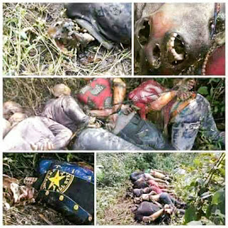 Dead Bodies Discovered in the Forest in South East