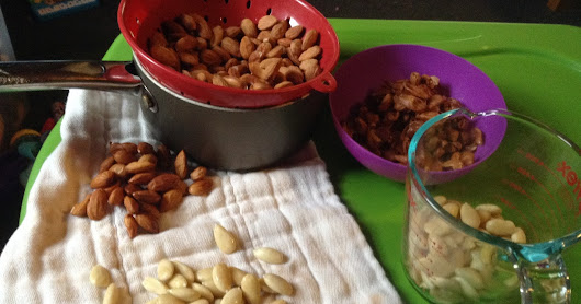 Road to Macaroons: Blanching and Sprouting Almonds