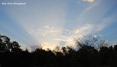 Sunrise with sunbeams