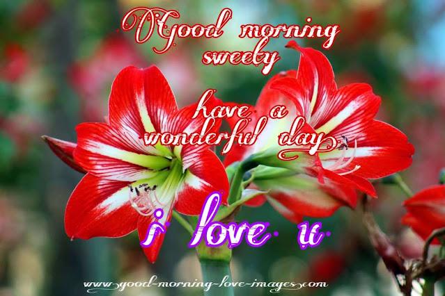 good morning sweety i love u