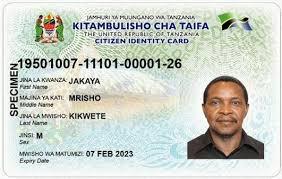 Tanzania Jobs Portal - Career