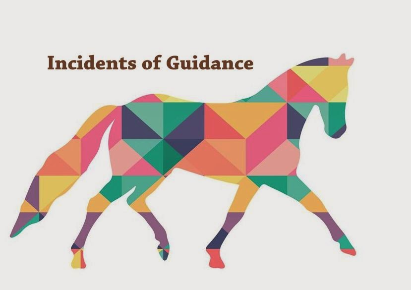 Incidents of Guidance