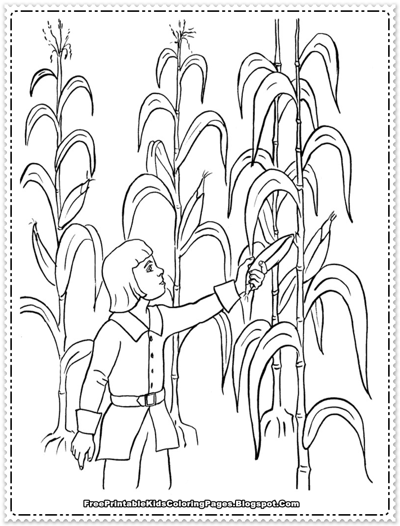 harvesting the corn field printable kids coloring sheet - Kids Color Sheet