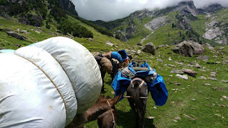 Hampta Pass, trek