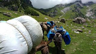 Hampta Pass, trek