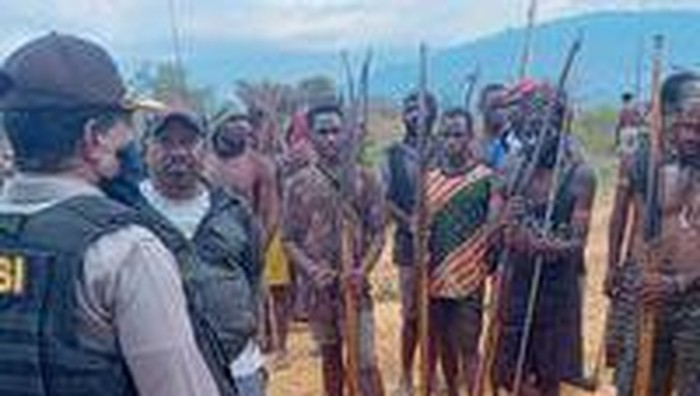 Damai, 2 Kampung Perang di Papua Bayar Denda 65 Ekor Babi Senilai Rp 2 M