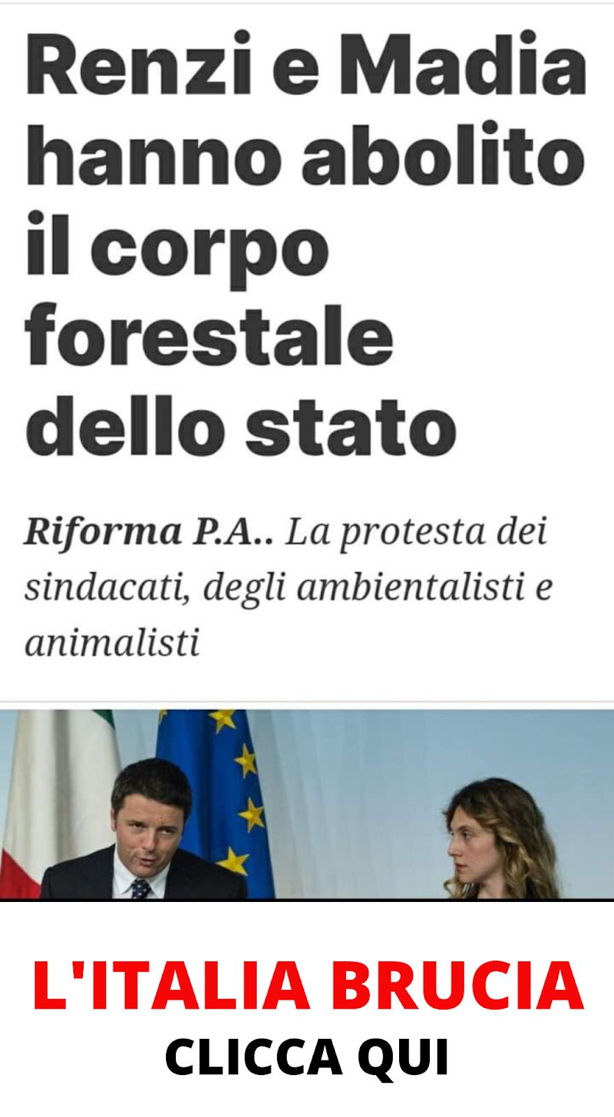 OLTRE 20 MILIONI DI ANIMALI ARSI VIVI, LA STRAGE DEI ROGHI