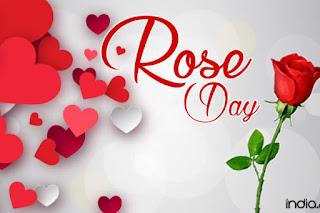 रोज डे शुभकामना शायरी। ROSE Day wishing Shayari in Hindi