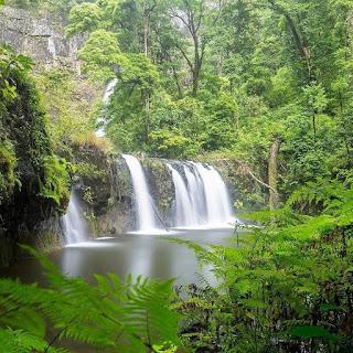 Nature waterfall fresh environment