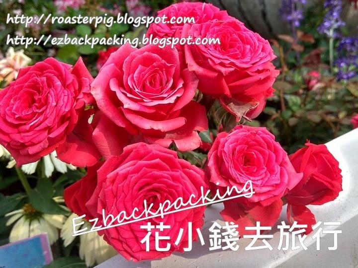 香港玫瑰園2021