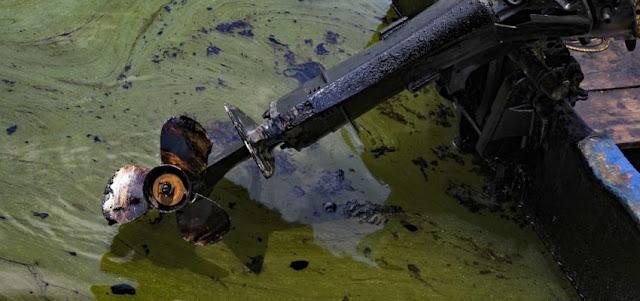 El Lago de Maracaibo sufre un «constante derrame de crudo»