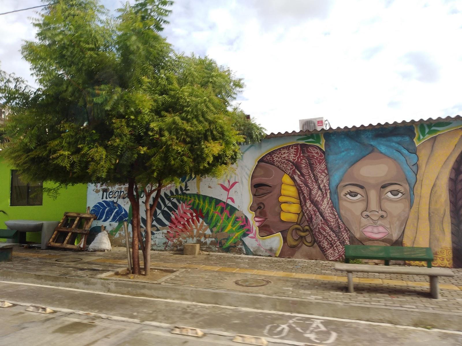 Casutur Murales En El Par Vial De Barranquilla