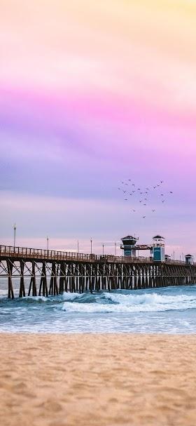خلفية غروب الشمس الوردي على الشاطئ الجميل