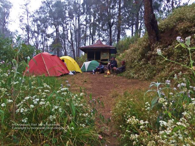 Jalur Pendakian Gunung Argopuro via Baderan