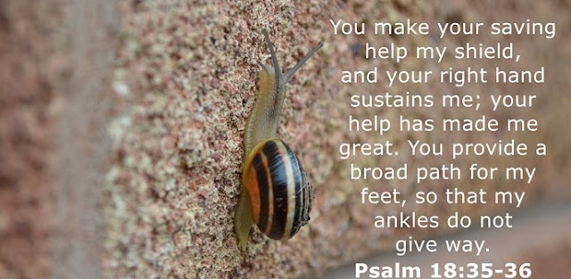 You make your saving help my shield, and your right hand sustains me; your help has made me great. You provide a broad path for my feet, so that my ankles do not give way.