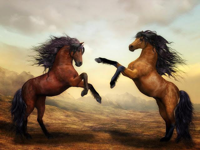 أجمل وافضل صور الخيول وخلفيات الكمبيوتر