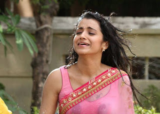 Trisha-transparent-saree