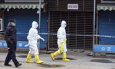 China Govt on Corona virus Efforts