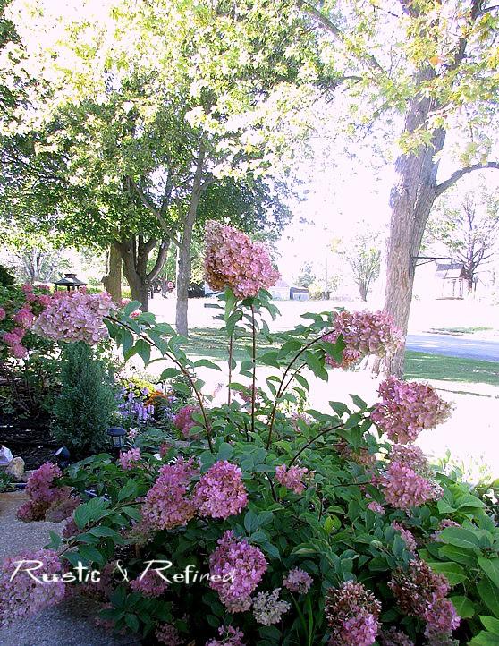 Fall Garden Tour