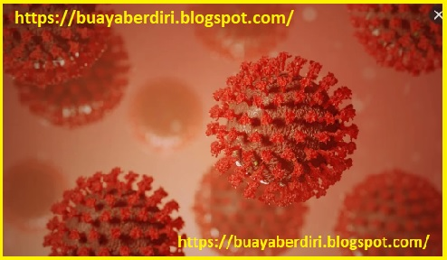 Wabah virus corona di Indonesia