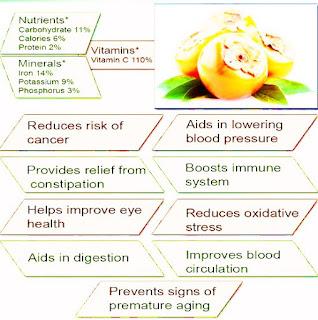 medicinal benefits of persimmon tree