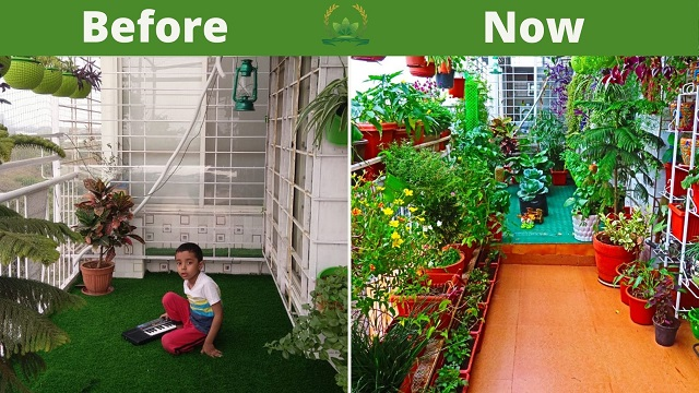 Amrita Bharti's garden
