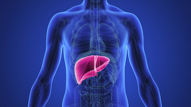 liver health supplements for healthy liver.