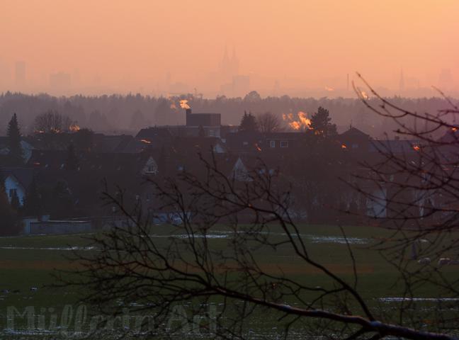 Kölner Fenster im Februar ©muellerinart