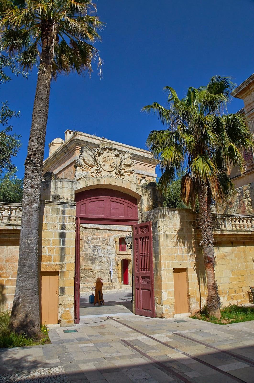 drzewa palmowe na Malcie