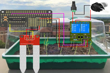 IoT based project using Raspberry Pi Automatic Self Irrigation System