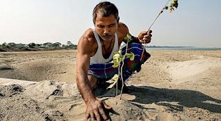 Αυτός ο άνδρας δημιούργησε ολόκληρο δάσος μόνος του φυτεύοντας δέντρα κάθε μέρα επί 40 χρόνια