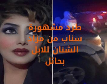 فيديو مسؤول مزاد الشنان للإبل بحائل يطرد مشهورة سناب