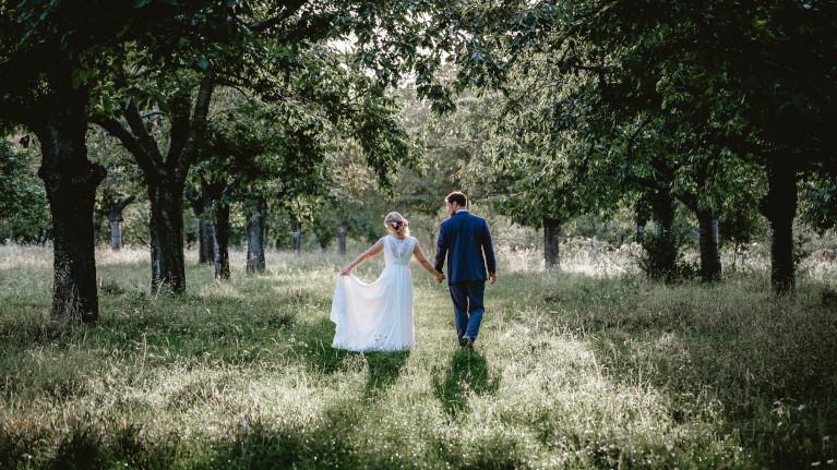 Brautpaar von hinten in der Natur zwischen Bäumen