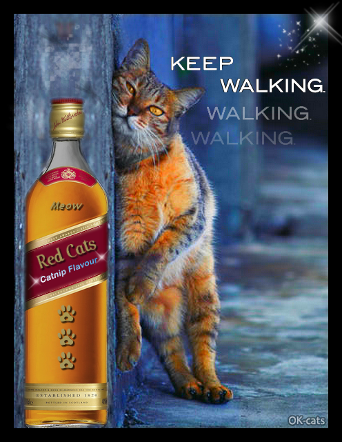 Photoshopped Cat GIF • 'Red cats',  catnip flavour, purrfect Whisky for kitties • Keep walking even when you're drunk