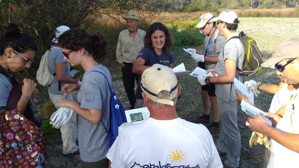 Voluntarios eliminando plantas invasivas en La Rocina
