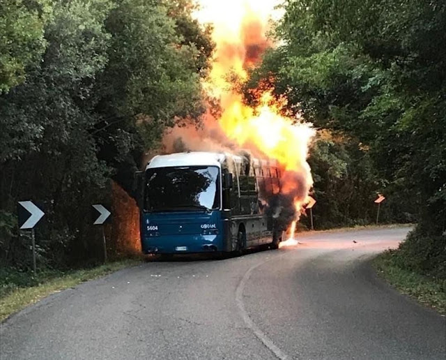 Cotral - Un altro bus a fuoco