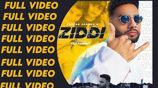 Ziddi Generation Lyrics Navaan Sandhu