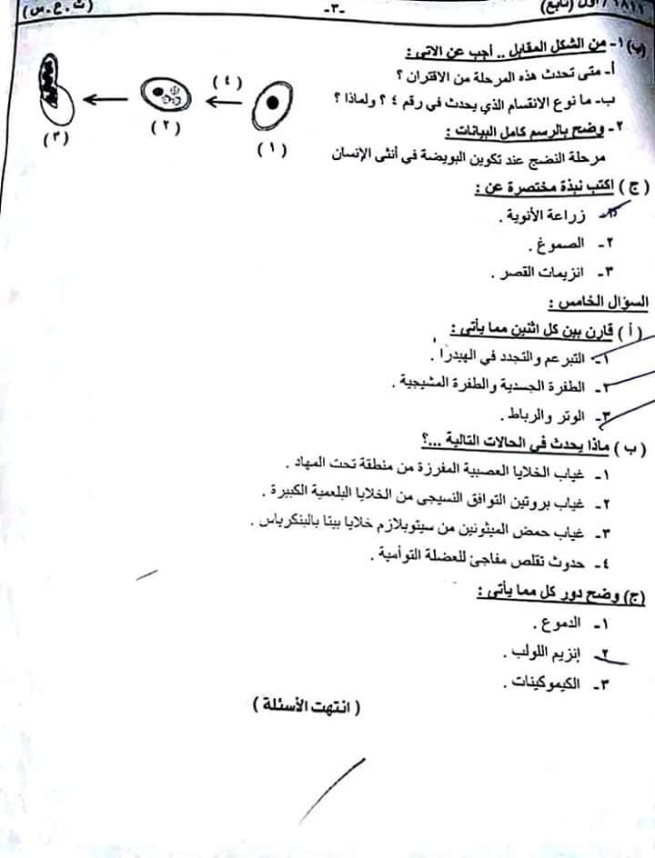 تجميع كل امتحانات السودان للصف الثالث الثانوي 2019 %25D8%25A7%25D8%25AD%25D9%258A%25D8%25A7%25D8%25A13