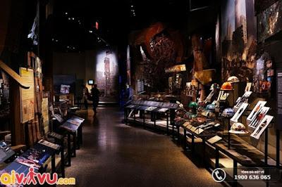 Bằng nhiều hình thức trưng bày, lưu trữ, tường thuật những bộ sưu tập hoành tráng.