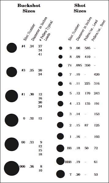 Shot_size_chart.jpg