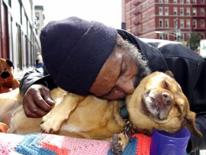 Quanto ódio?!  Por quê?  Tanta beleza neste mundo e escolhestes odiar?  Olhe... Um mendigo afaga um cão.  Arrume um cão. Ele vai te humanizar.