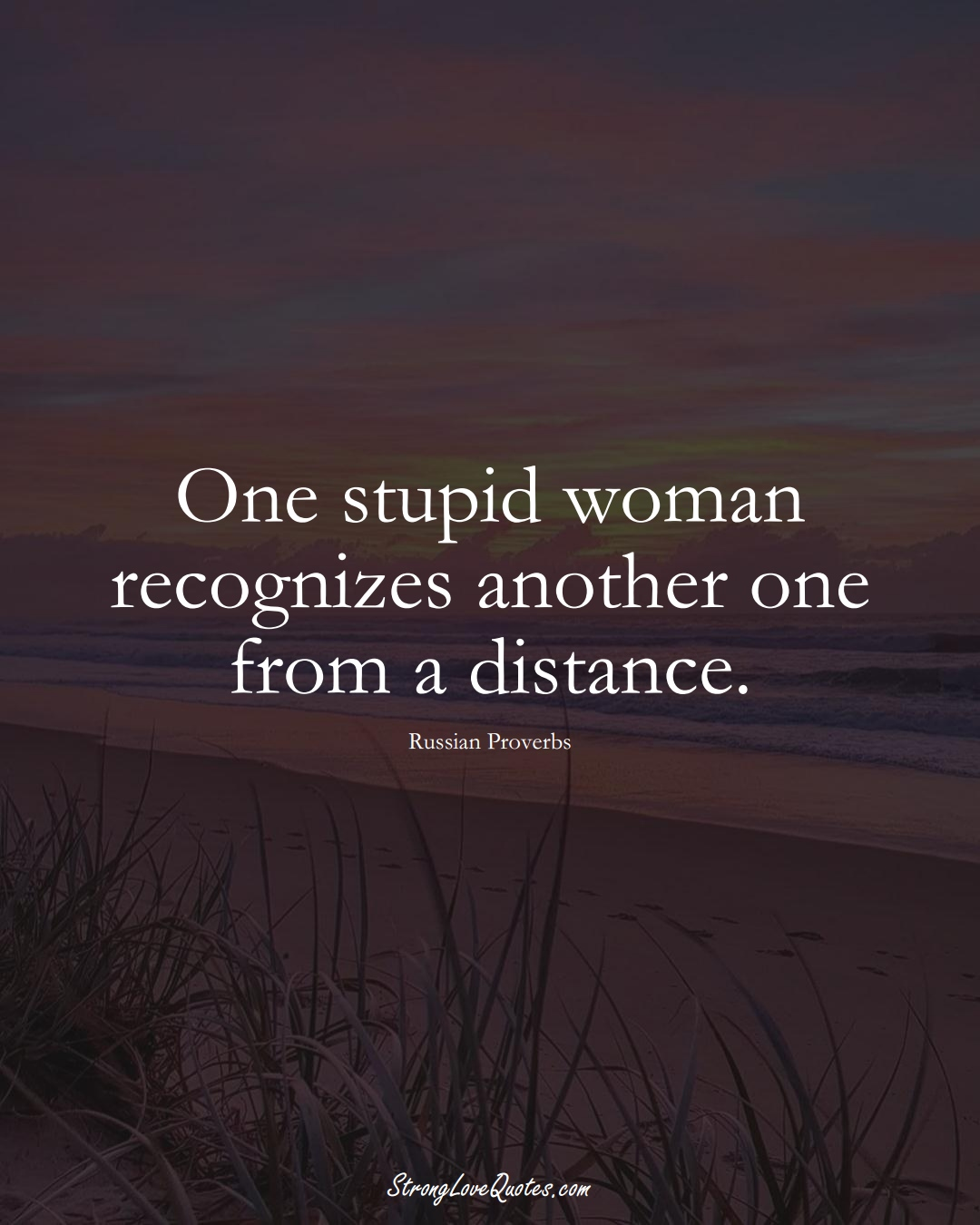 One stupid woman recognizes another one from a distance. (Russian Sayings);  #AsianSayings